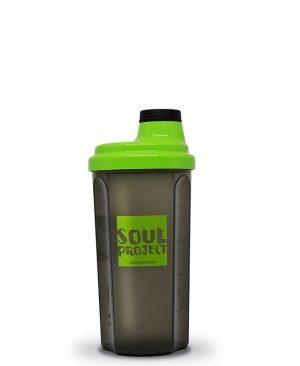 shaker soul project